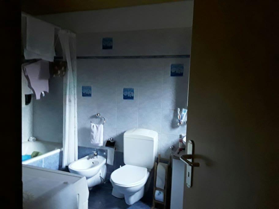Bathroom, bagno doccia a disposizione della camera doppia, per i 2 ospiti. Normalmente senza i panni stesi :-) !