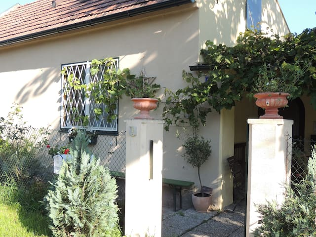Friedas studio, with garden, Wlan, parking, - Groß-Enzersdorf - Huoneisto