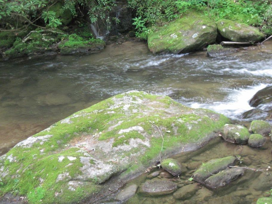 15 feet to beautiful Buffalo Creek constant soothing sound of the mountain stream