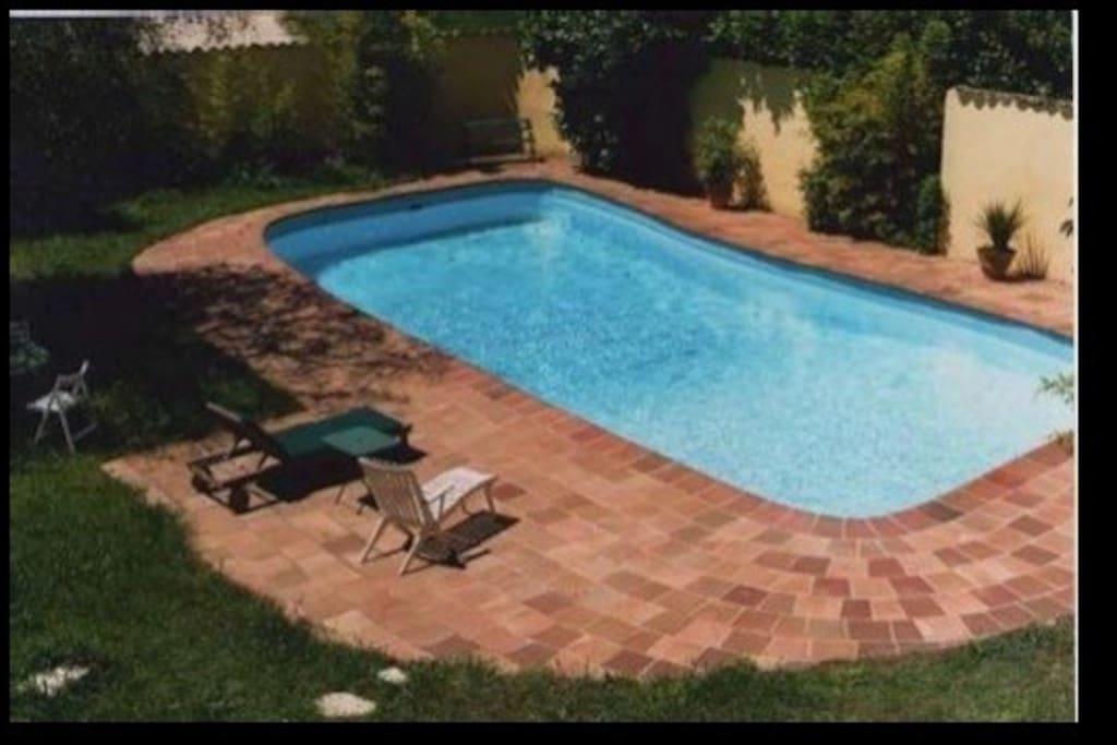 piscine vue depuis la terrasse