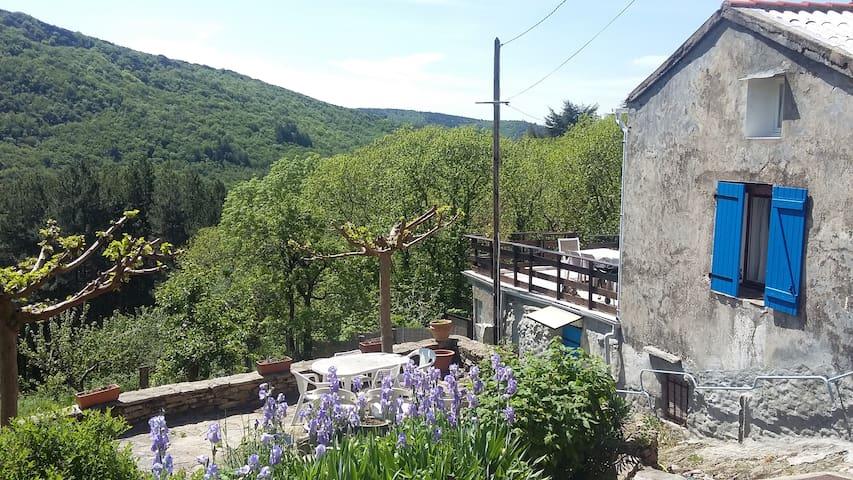Maison ancienne rénovée  montagne Noire Minervois - Castans - Apartament