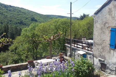Maison ancienne rénovée  montagne Noire Minervois - Castans