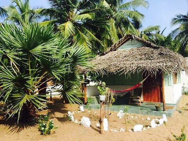 Sun Wind Beach Kalpitiya Double Bed Cabana - No 4.