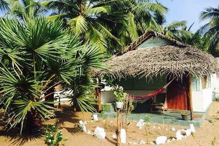 Sun Wind Beach Kalpitiya Double Bed Cabana - No 4.