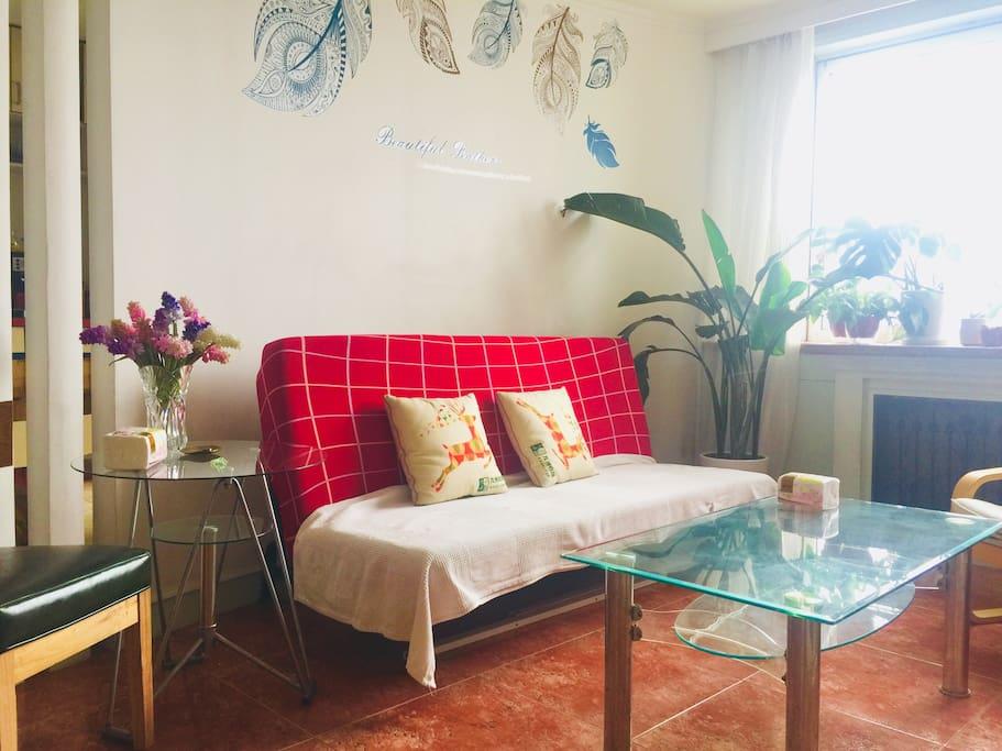 客厅里的沙发床,可以住
