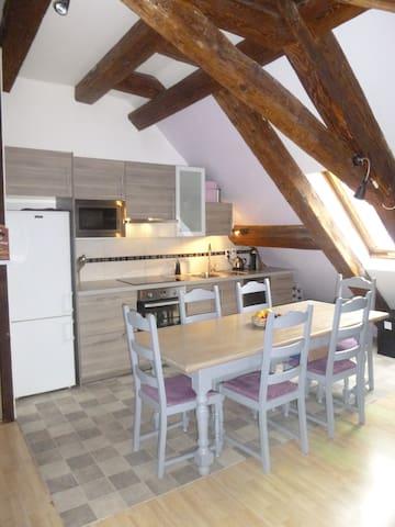 Charmant Duplex typique Alsacien - Kaysersberg - Wohnung