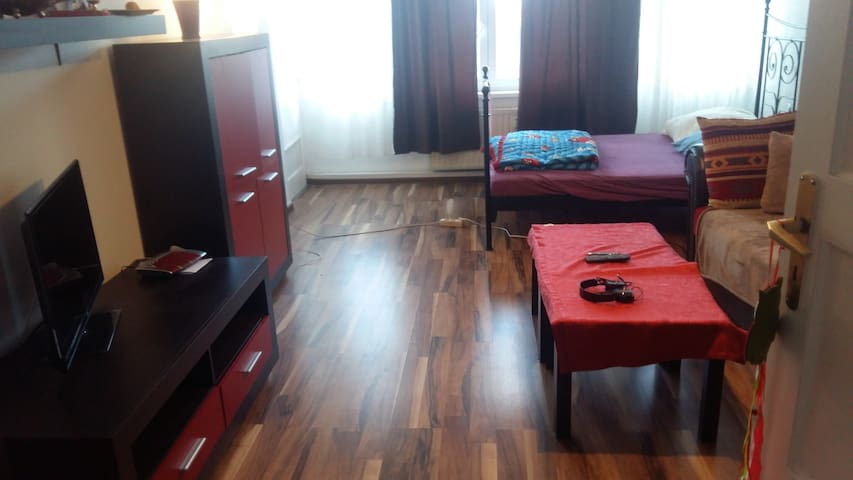 Nice & Comfortable Room in Furnished Apartment