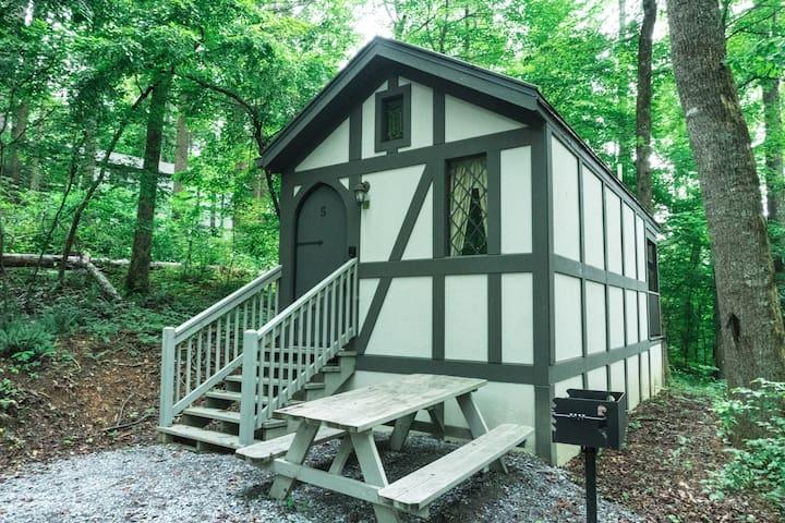 Tiny Home Cottage Near the Smokies #5 Fleur