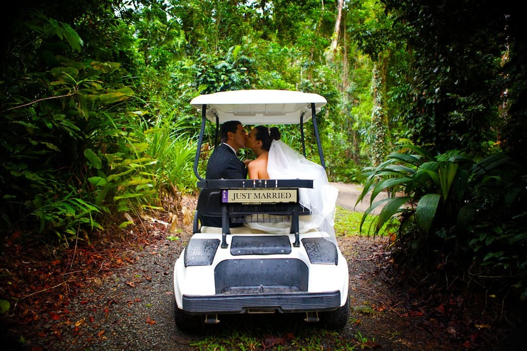 a golf buggy is supplied for you to explore the rainforest walks and picnic areas