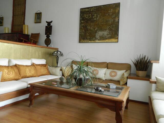 Muy bonito,acogedor,amplio y my bien ubicado. - Guadalajara - Apartment