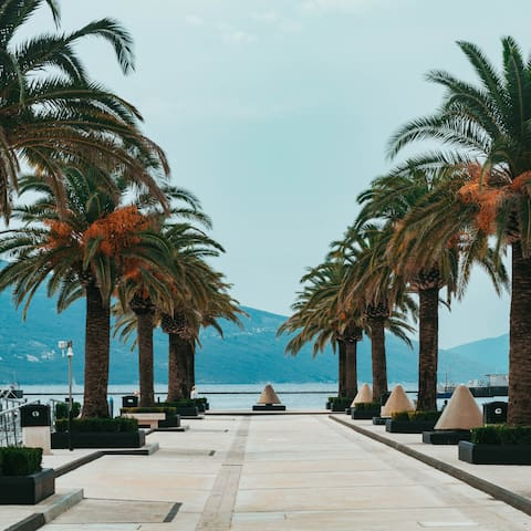 Guidebook for Tivat