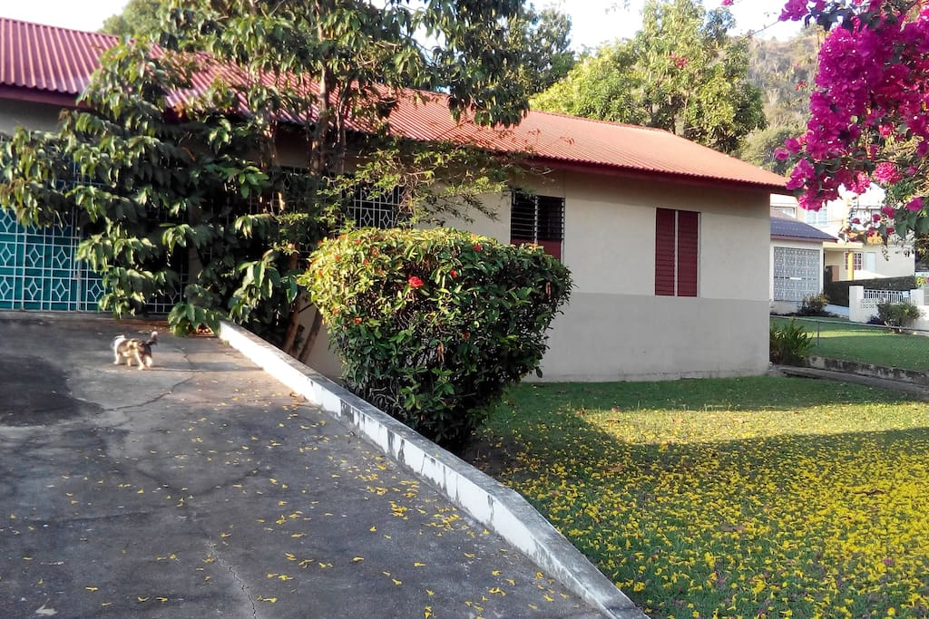 Rooms For Rent Near Utech