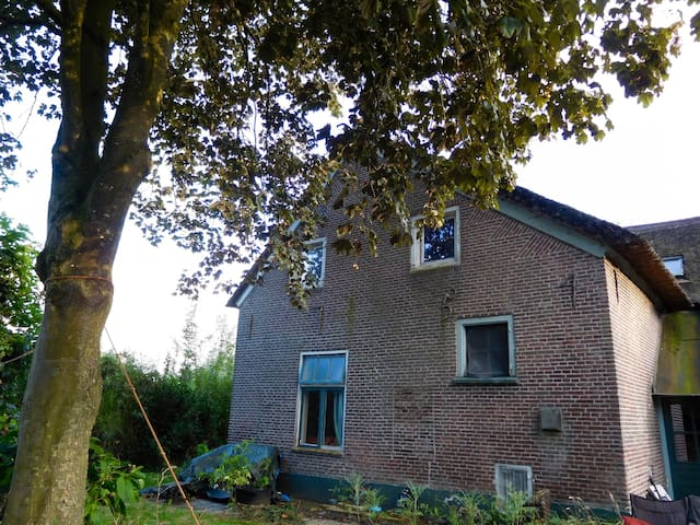 B&B De Blauwe Bloem, vegetarisch. - Wijhe - Bed & Breakfast