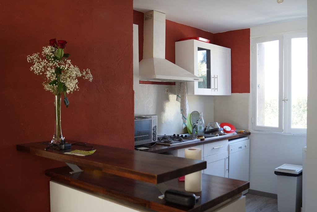 Cuisine en prolongement du salon, lave-vaisselle, four et micro-onde.