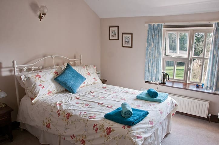 Superior Room B & B - HONITON - Bed & Breakfast