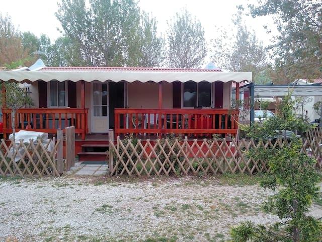 home mobile in camping blockh tten zur miete in. Black Bedroom Furniture Sets. Home Design Ideas