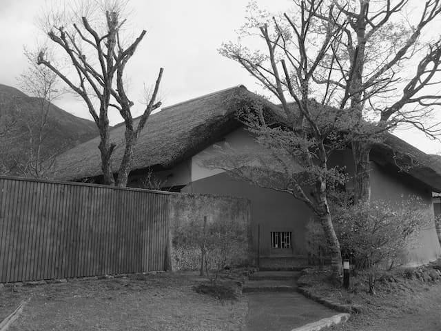 Art museum with thatched-roof house