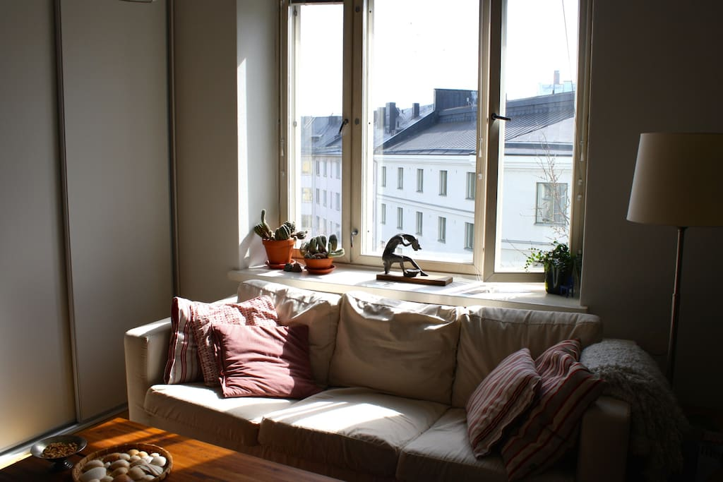 Livingroom window