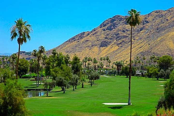 Palm Canyon Resort, Junior Room #1