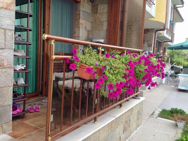 Вилла Татьяна - Лозенец - House