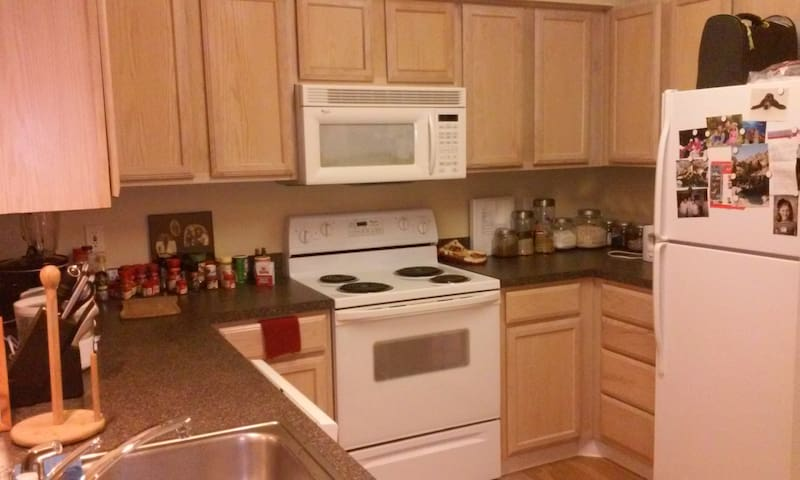 Beautiful, clean, safe appartment - Houston - Daire