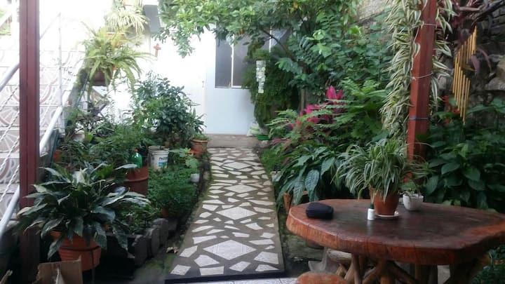Casa Lupita.     ( Room 1 of 3)