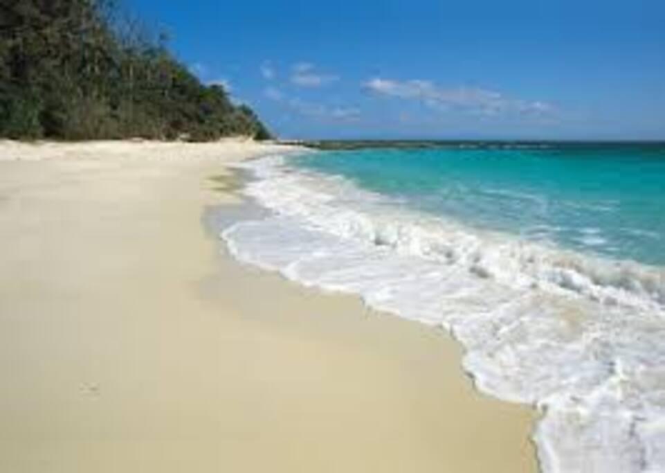 Gorgeous local beaches just a short walk away.