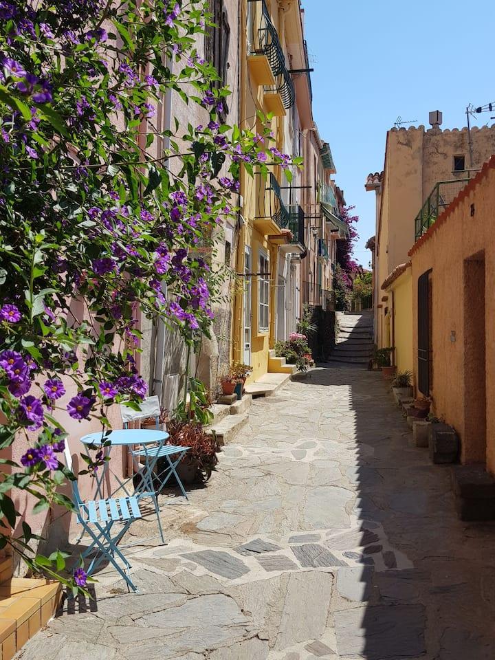 Séjour en plein coeur des couleurs de Collioure