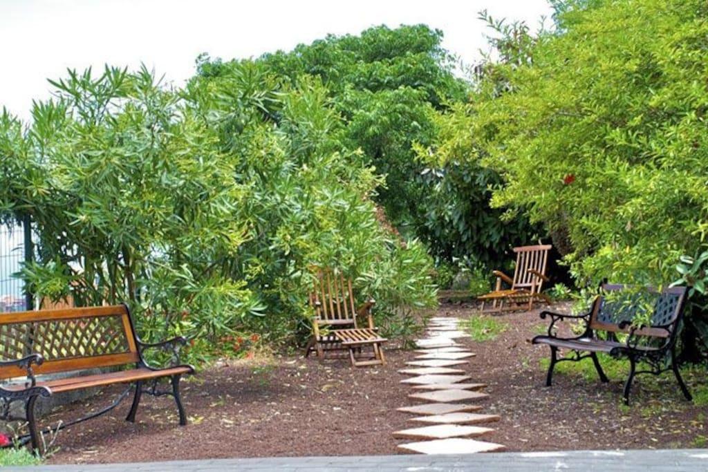 pleasant garden area