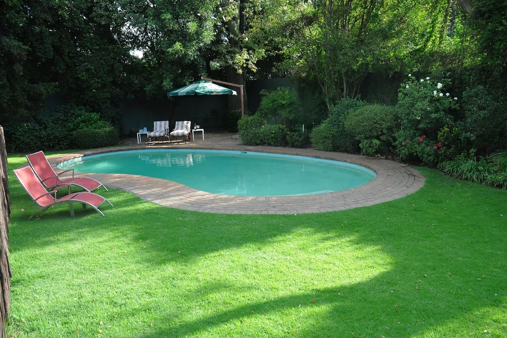 Garden and pool with large variety of trees, shrubs and plants.. a quiet place to relax