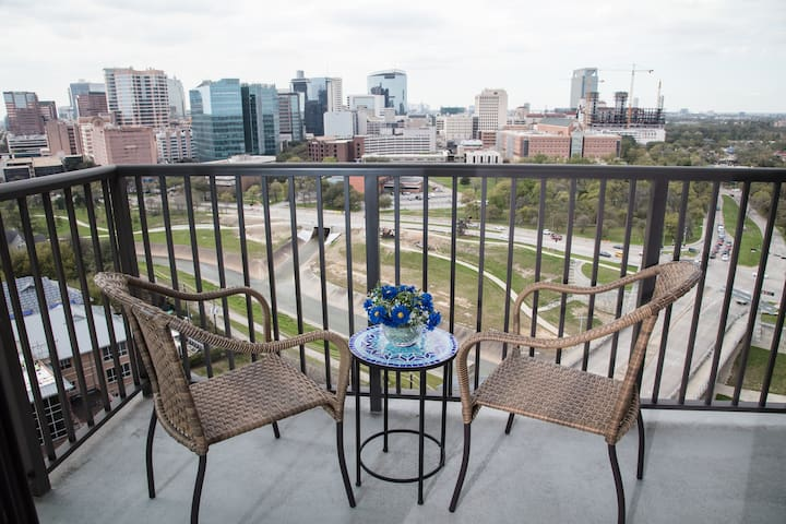 TMC - MD Anderson - NRG  1B/1B Luxury Living Apt.