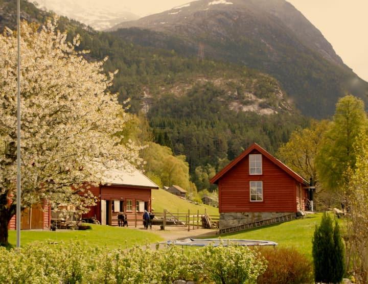 Gardsferie ved fjorden -Hest - Båt - Kajakker