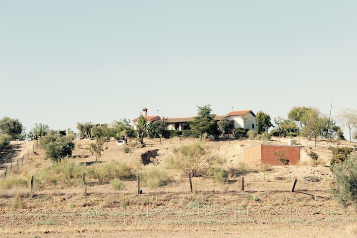 CASA RURAL LA VEGA EN CASARRUBIOS DEL MONTE-TOLEDO