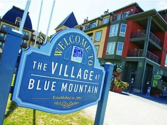 Free shuttle service to and from Blue Mountain Village.  The village market is any easy stop to pick up a few grocery items or enjoy one of the many great restaurants in the village.  Lots of unique shops to explore too!