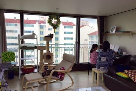 Everland and Korean folk village - Apartment