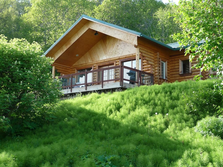 Log Cabin on a 40-Acre Homestead, Homer, Alaska