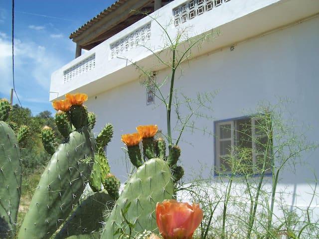 Maison au coeur de la Zone Protégée Rocha da Pena