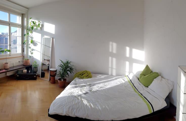 Big nice Room (22sqm) near MESSE Basel