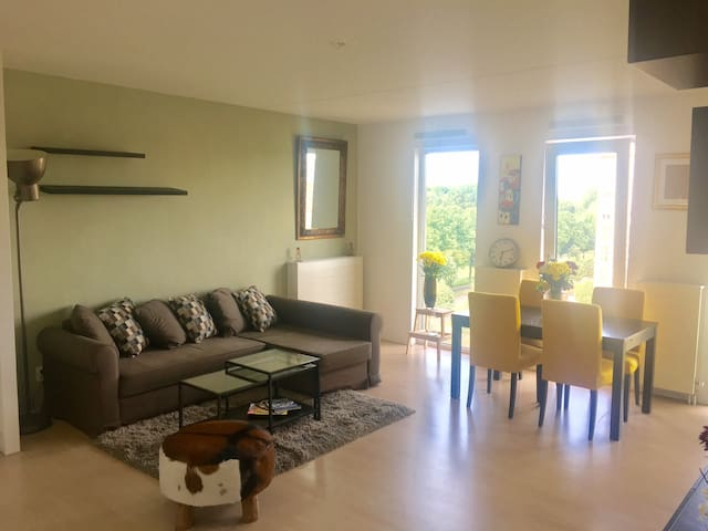 Great Amsterdam appartment, near airport and lake!