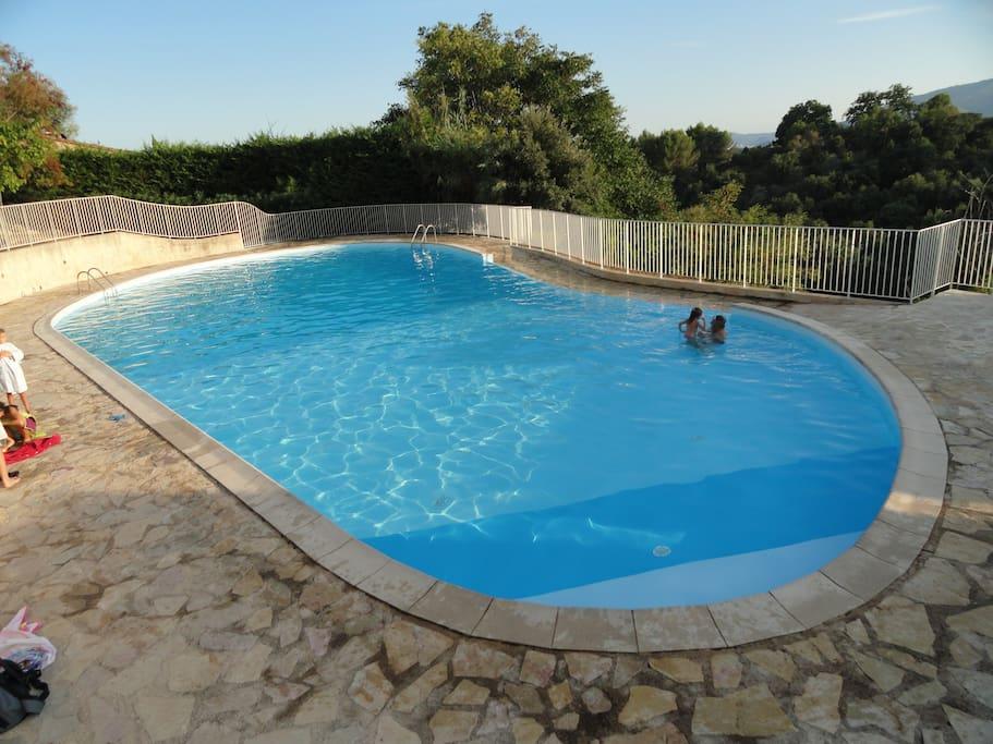 Outre les plages dallées, la piscine bénéficie d'une grande pelouse solarium