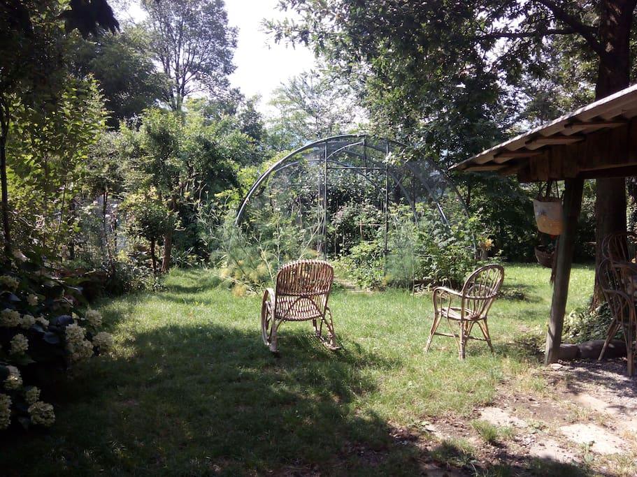 ...il nostro orto/giardino..