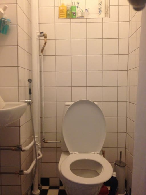 Tiny but new and functional bathroom