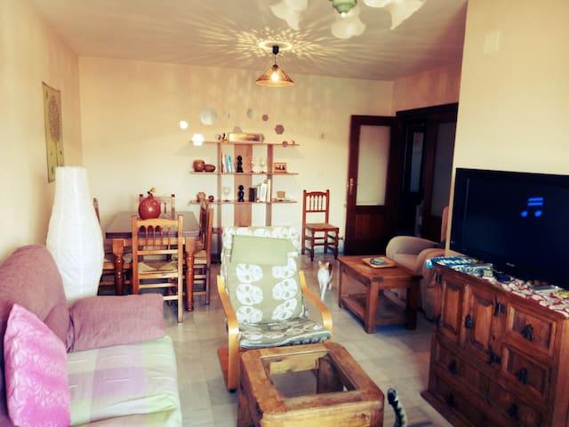 Alhamra 3 habitaciones (Wi-Fi/Parking gratis)