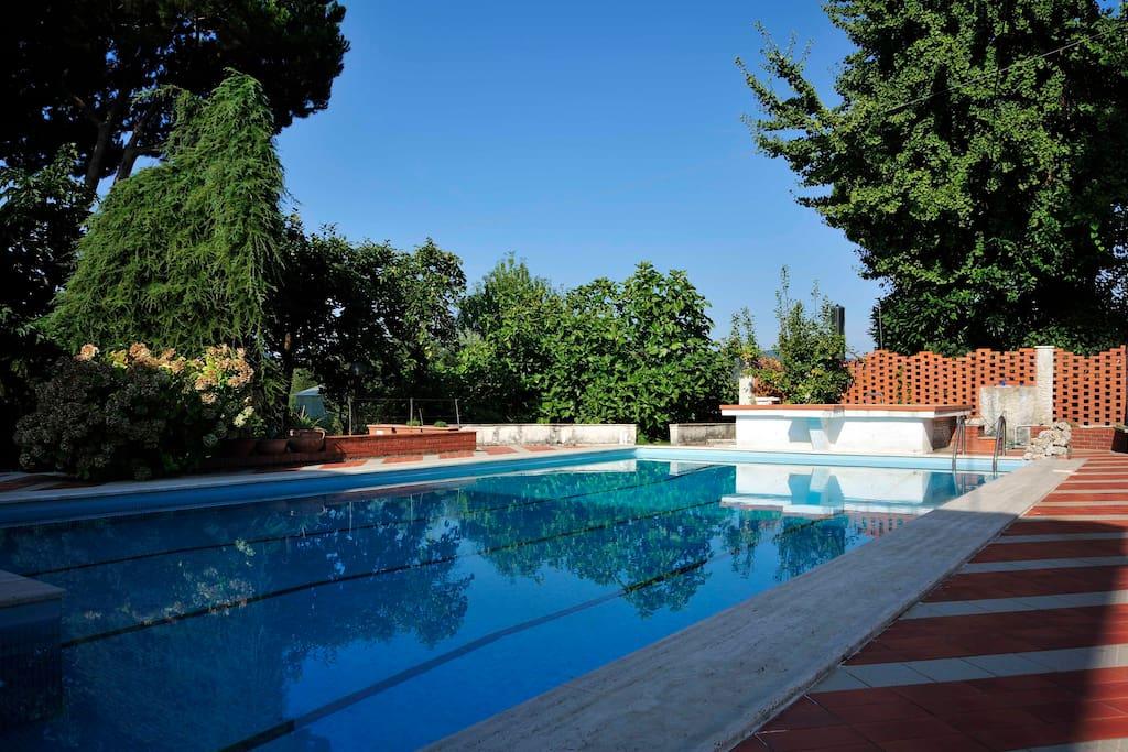 Villa con piscina ville in affitto a dogana liguria italia - Villa italia piscina ...