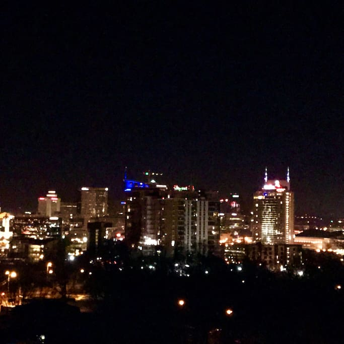 Breath taking view of the city skyline!