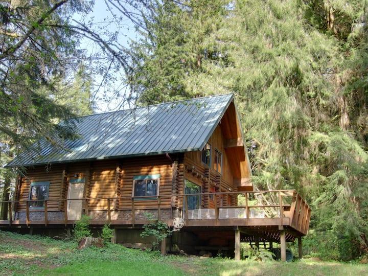 Forest Log Cabin near River/Bay/Sea