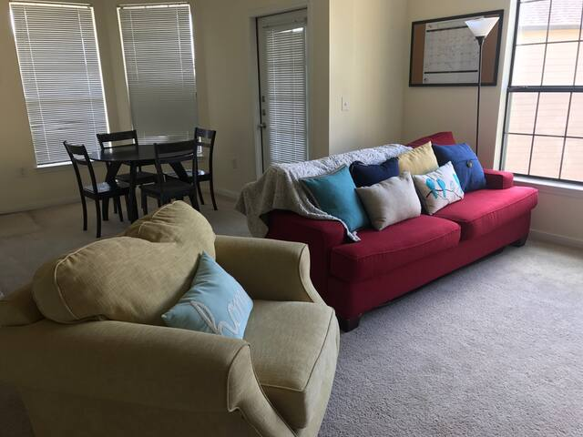 Spacious 1 Bedroom, Huge Balcony - Houston  - Apartment