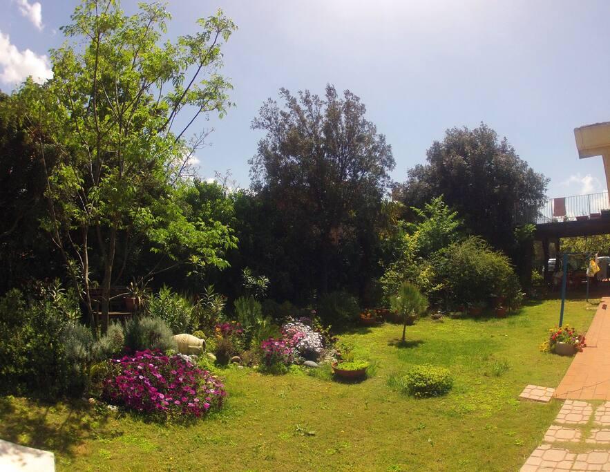 Vista del giardino - Garden View