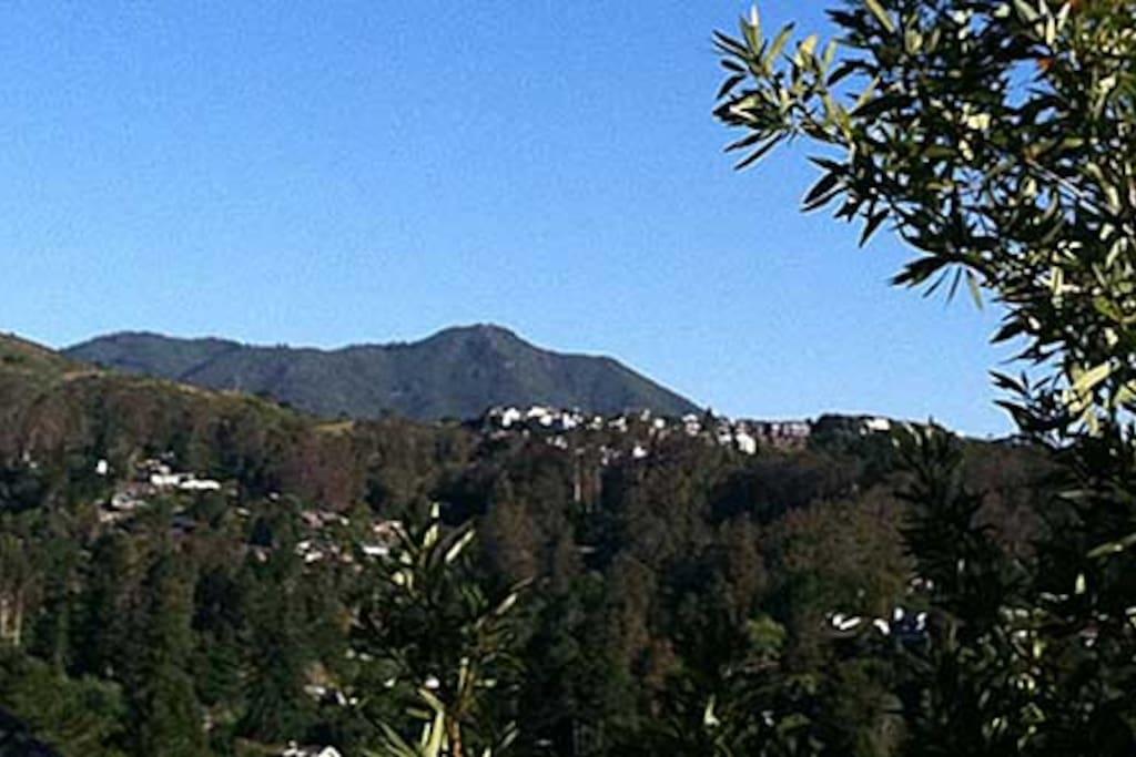 View of Mt. Tam from front door