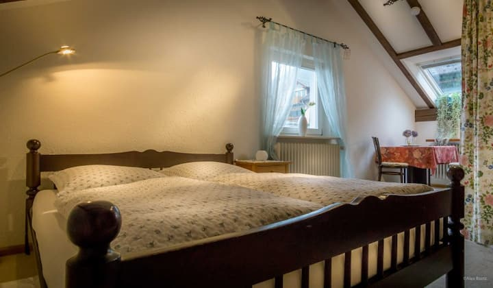 Haus Palais, (Münstertal), Ferienwohnung Typ B, 65qm, 1 Schlafzimmer, max. 4 Personen